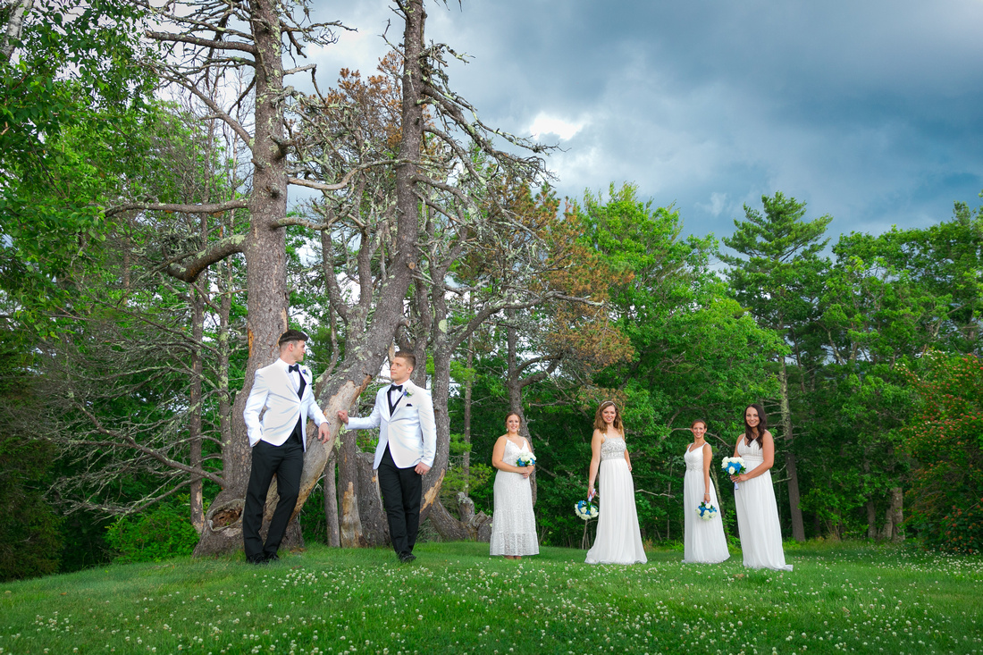 Wilton Brothers Photography – best photographers in NH