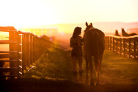 girl walks with her horse at sunset