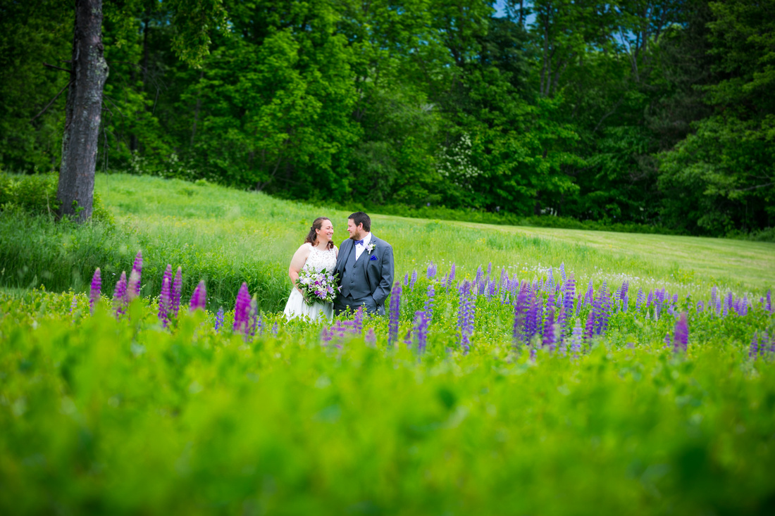 Bride and groom in lupine field